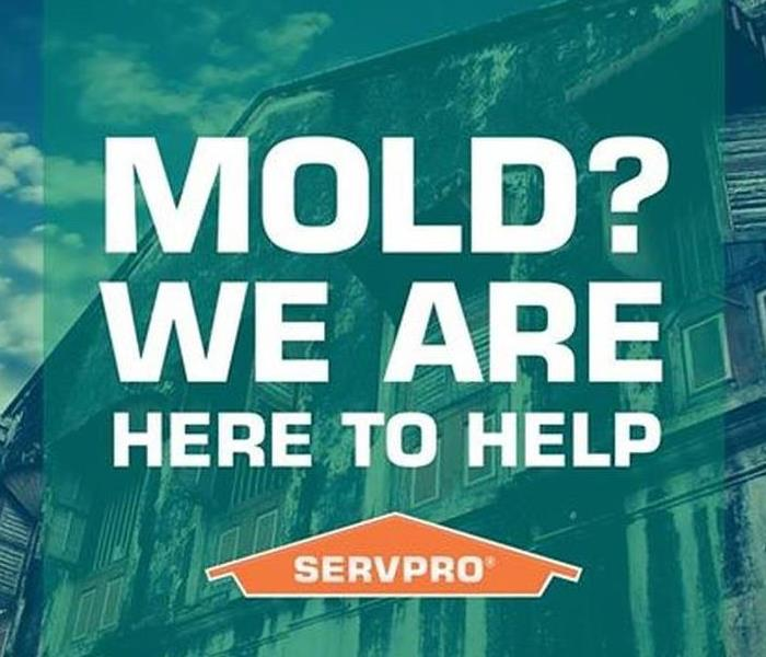 Mold advertisement by SERVPRO