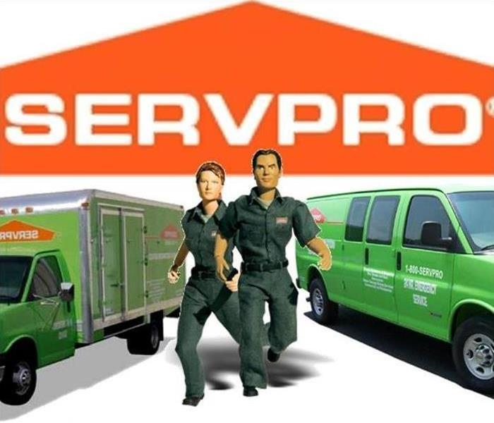 Commercial 7 Reasons To Choose SERVPRO Of Mesquite