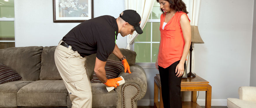 Mesquite, TX carpet upholstery cleaning